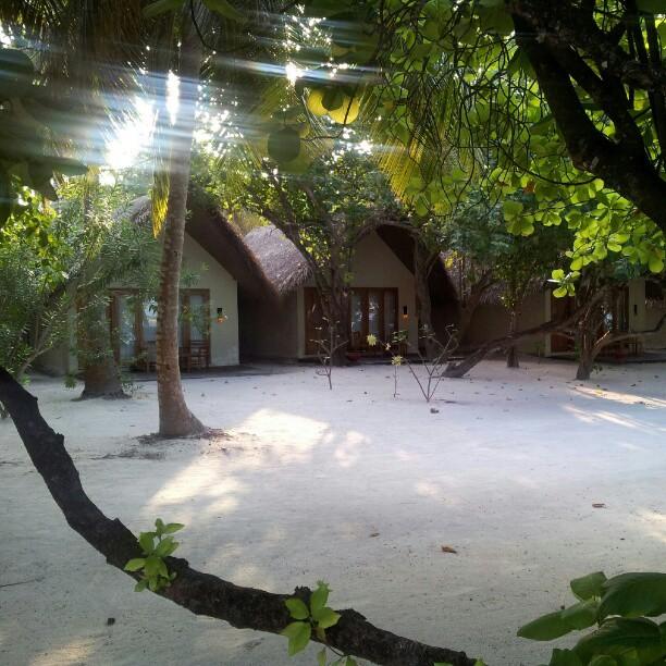 Beach villas in Maldives